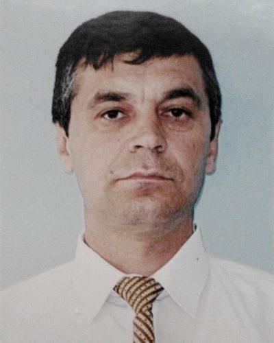 Ion Gradea